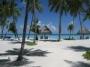 maldivi2.jpg