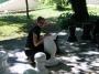 Градина шах