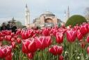 Фестивал на Лалето - Истанбул от Русе