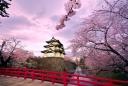 Обиколка на Япония за цъфтежа на вишните